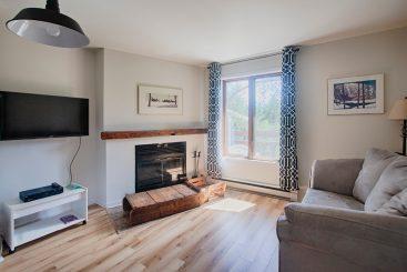 Condo 1 chambre - salon avec foyer